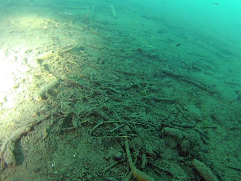 Controllo di sottofondi e pavimentazioni stradali